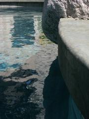 Pool Boulder